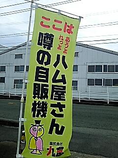 2018-10-06T19:01:42.JPG